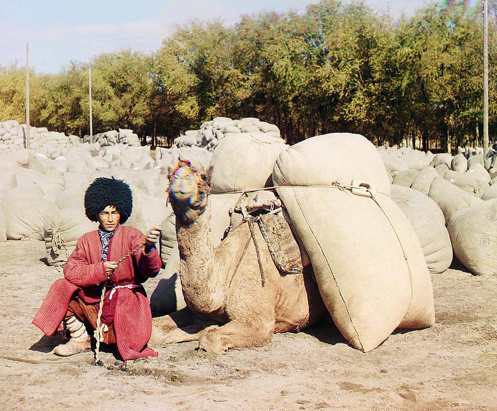 Un hombre de Turkmenia con un camello.